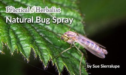 Bug Bane Spray: Natural Mosquito Repellent with Essential Oils