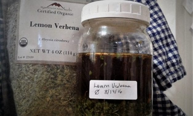 How to Make a Tincture: Easy Herbal Home Medicine