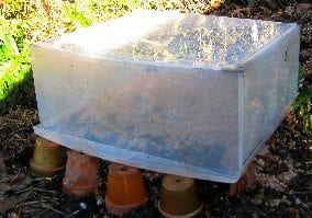 Garden Cloches How To Make A Recycled Mini Greenhouse