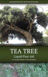 Tea-Tree-Folio-Cover-little