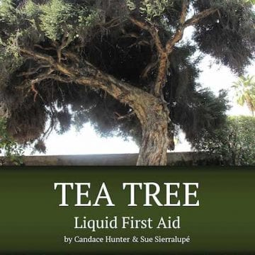 tea tree book cover
