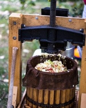 Cider Pressing with the Undead – Part 2