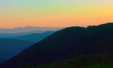 14.Herbalism on the Appalachian Trail