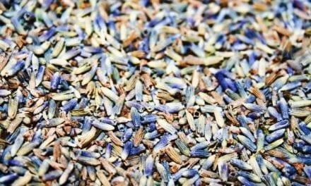 Herbal Mattress Powder