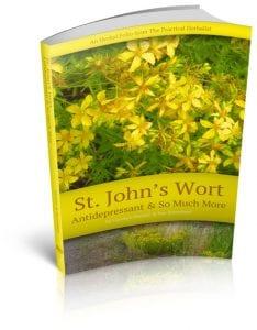 Saint John's Wort: Antidepressant & So Much More