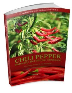Chili-Folio-3D-Cover-noshadow-432