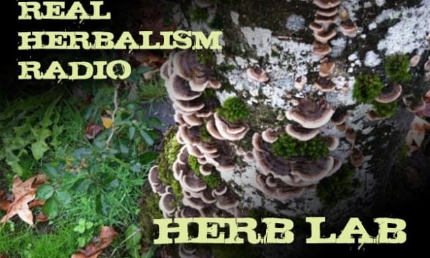 47.Herb Lab with Mushrooms, News, Herbal 101 and a Preview