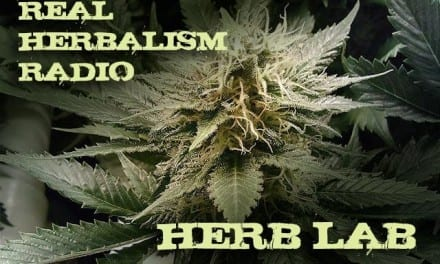 51.Herb Lab with Classic Cannabis and Herbal 101