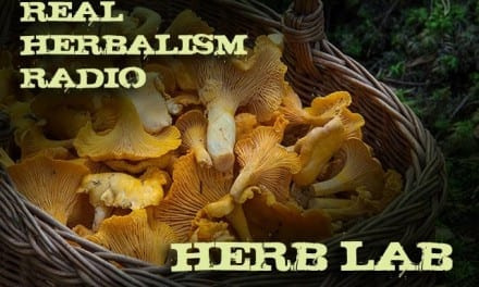 63.Herb Lab with Mushroom Medicine and Herbal 101