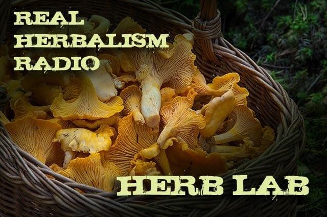 63.Herb Lab with Mushroom Medicine and Herbal 101