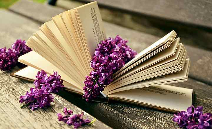 72.Herbal Books for 2016