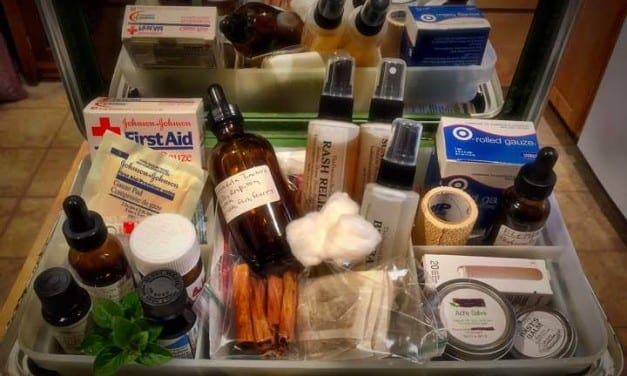35 Must Haves for Your Herbal First Aid Kit