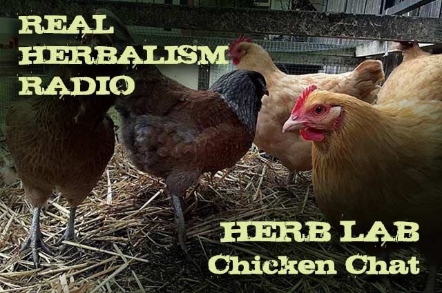 81.Herb Lab Chicken Chat and Chicken Book Review