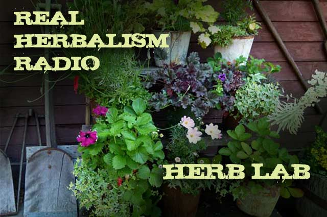91.Herb Lab – Growing Herbs in Small Spaces