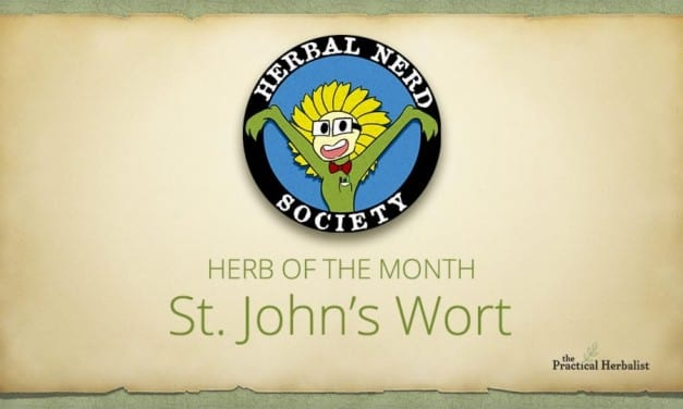 Best Collection of St. John's Wort Resources