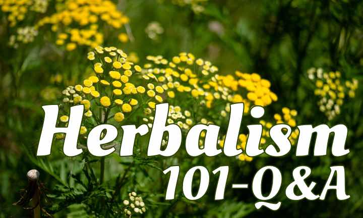 101.Health Questions for the Herbal Experts