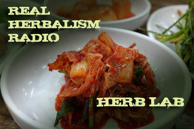 105.Herb Lab – Digestive Health and the Microbiome with Yaakov Levine