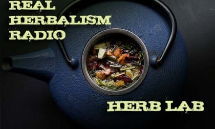 111.Herb Lab – Top 5 Herbs for Chronic Conditions with Rosalee De La Foret