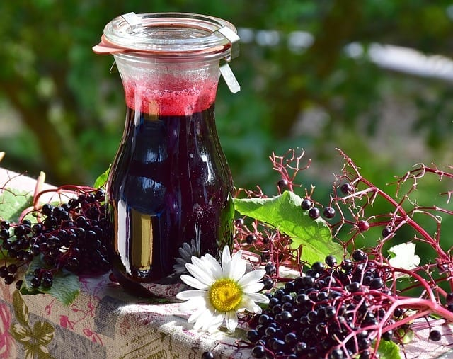 How the Energetics of Elderberry and Elder Flower Prevent Flu
