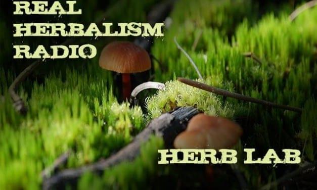 127.Herb Lab – Jason Scott – Mushroom Alchemy