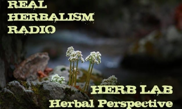 133.Herb Lab – Dr. Bill Rawls – Perspectives on Modern Herbalism