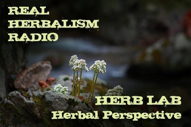 133.Herb Lab – Dr. Bill Rawls – Perspectives on Modern Herbalism