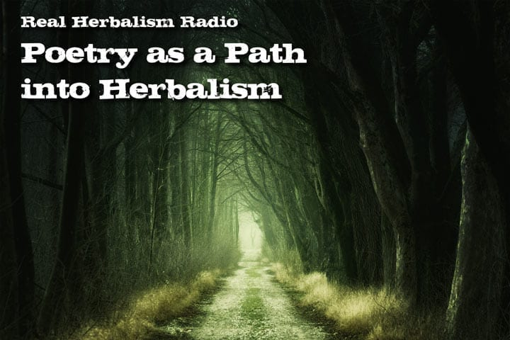 134.Amanda Dilday – Poetry as a Path Into Herbalism