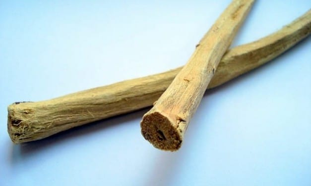 Licorice Root Properties, Energetics, and Uses