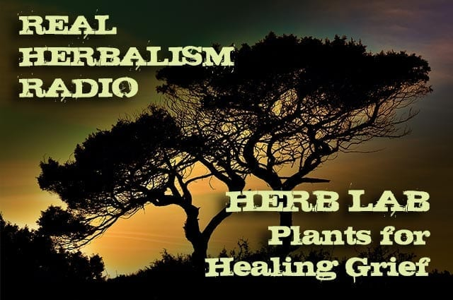 141.Herb Lab – Plants for Healing Grief
