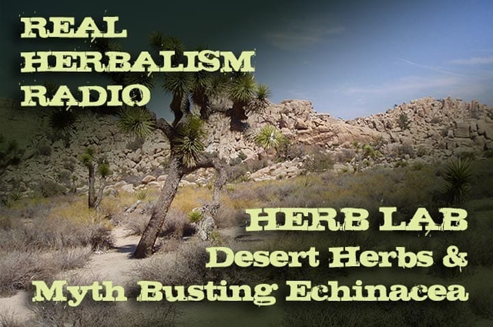 143.Herb Lab – Desert Herbs and Myth Busting Echinacea