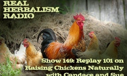 149.Replay 101 on Raising Chickens Naturally with Candace and Sue