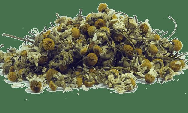Anti-Fungal Salve Recipe