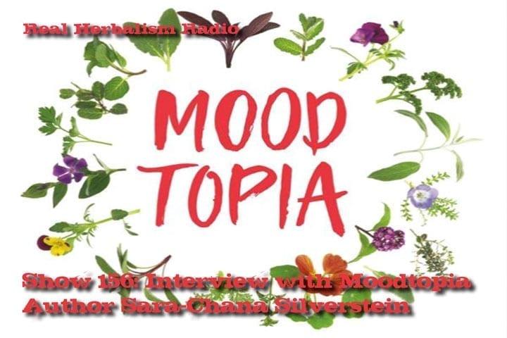 156.Interview with Moodtopia Author Sara-Chana Silverstein