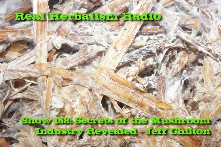 158.Secrets of the Mushroom Industry Revealed – Jeff Chilton