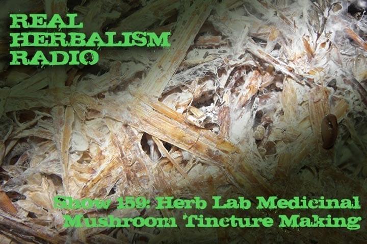 159.Herb Lab – Medicinal Mushroom Tincture Making