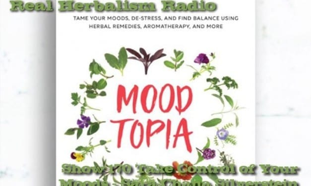 170.Take Control of Your Moods – Sara-Chana Silverstein