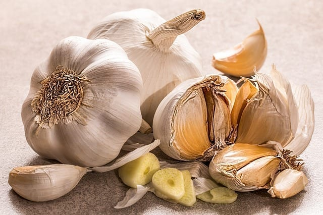 Garlic Energetics for Ayurveda, TCM, Western Herbalism