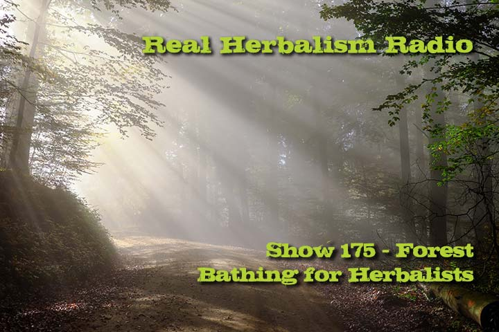 176.Forest Bathing for Herbalists