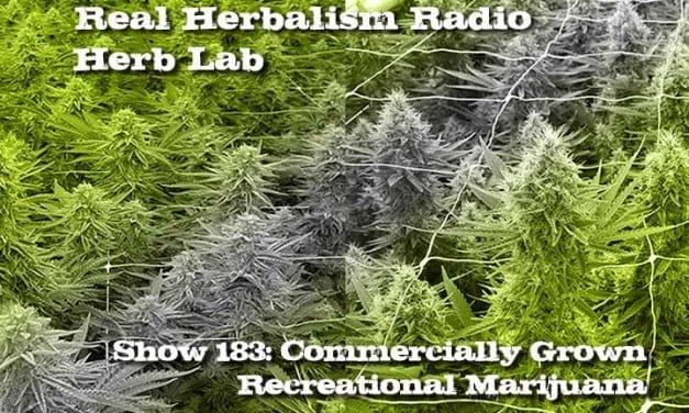 183.Commercially Grown Recreational Marijuana Herb Lab