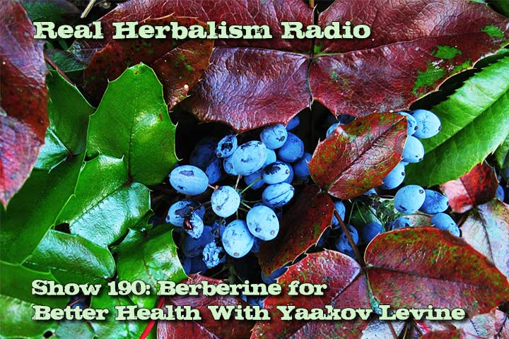 190.Berberine for Better Health With Yaakov Levine