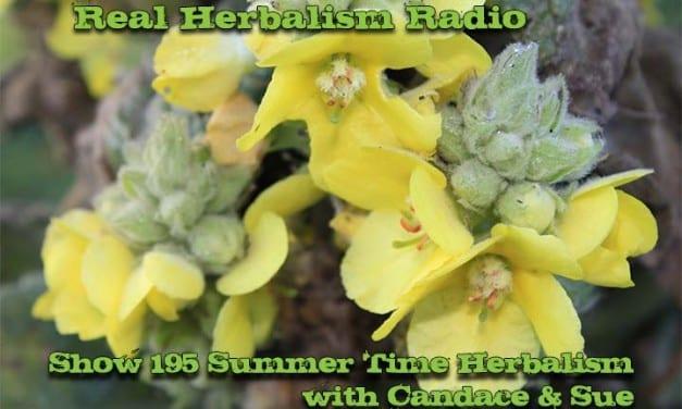 195.Summer Vacation Herbalism