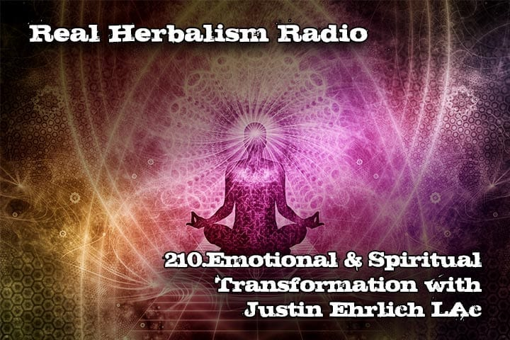 210.Emotional and Spiritual Transformation with Justin Ehrlich LAc