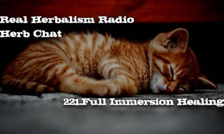 221.Full Immersion Healing – Herb Chat