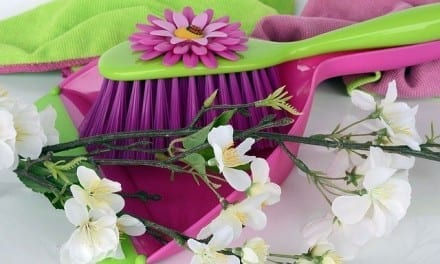 Spring Cleaning: Shift Your Life and Grow