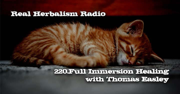 220.Full Immersion Healing with Thomas Easley
