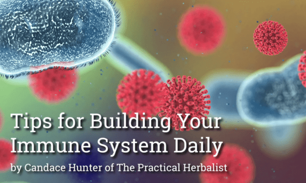 Tips for Boosting Your Immune System Naturally
