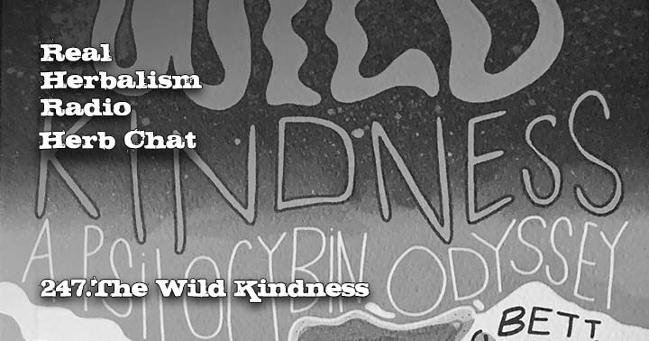 247.The Wild Kindness – Herb Chat