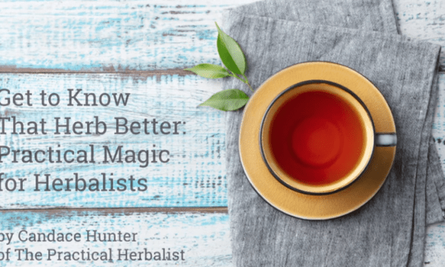 Get to Know That Herb Better: Practical Magic for Herbalists