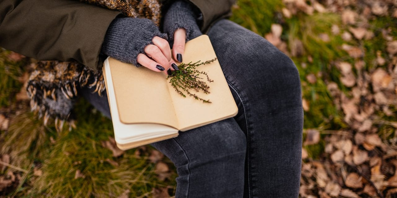 Wild Observation: How to Connect with Herbal Magic and The Plants