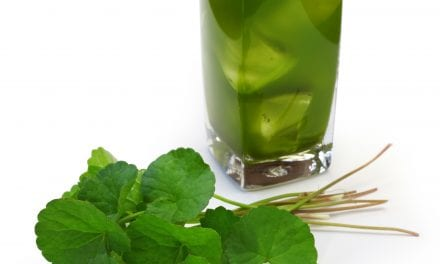 Gotu Kola, Centella asiatica: Memory, Anxiety, Circulation